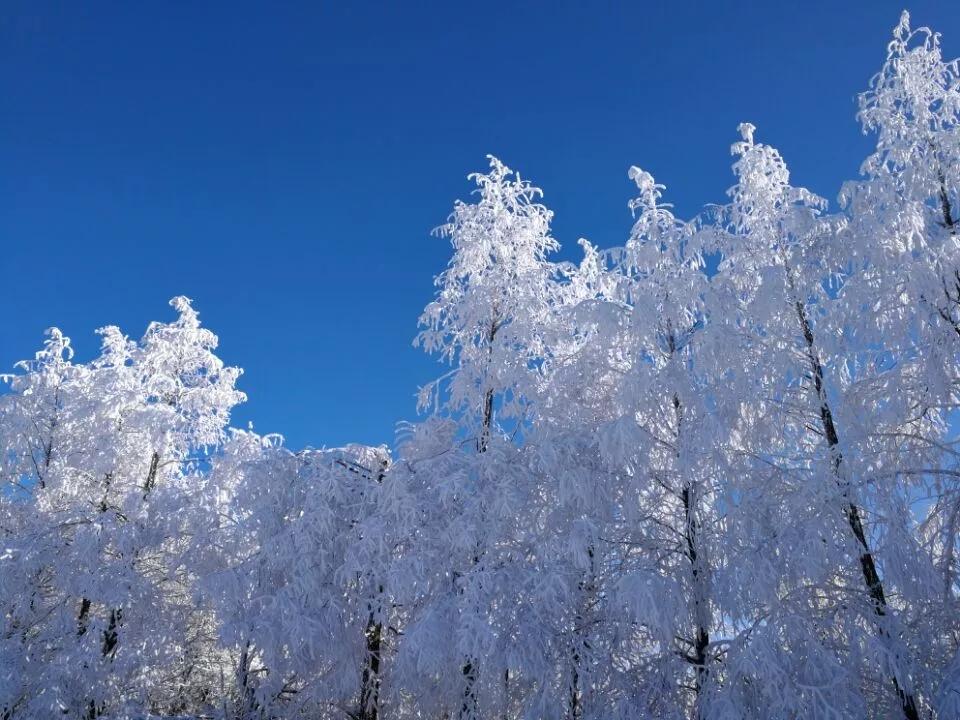 【资讯】十堰这些地方惊现冰挂奇观!美不胜收