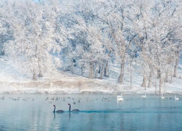 冬天里的童话——新疆伊宁天鹅泉