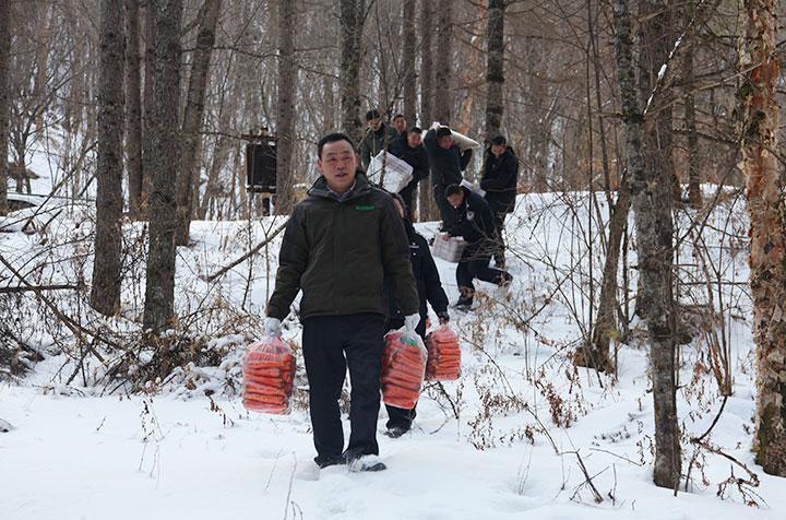 【资讯】神农架国家公园为野生动物送越冬食粮