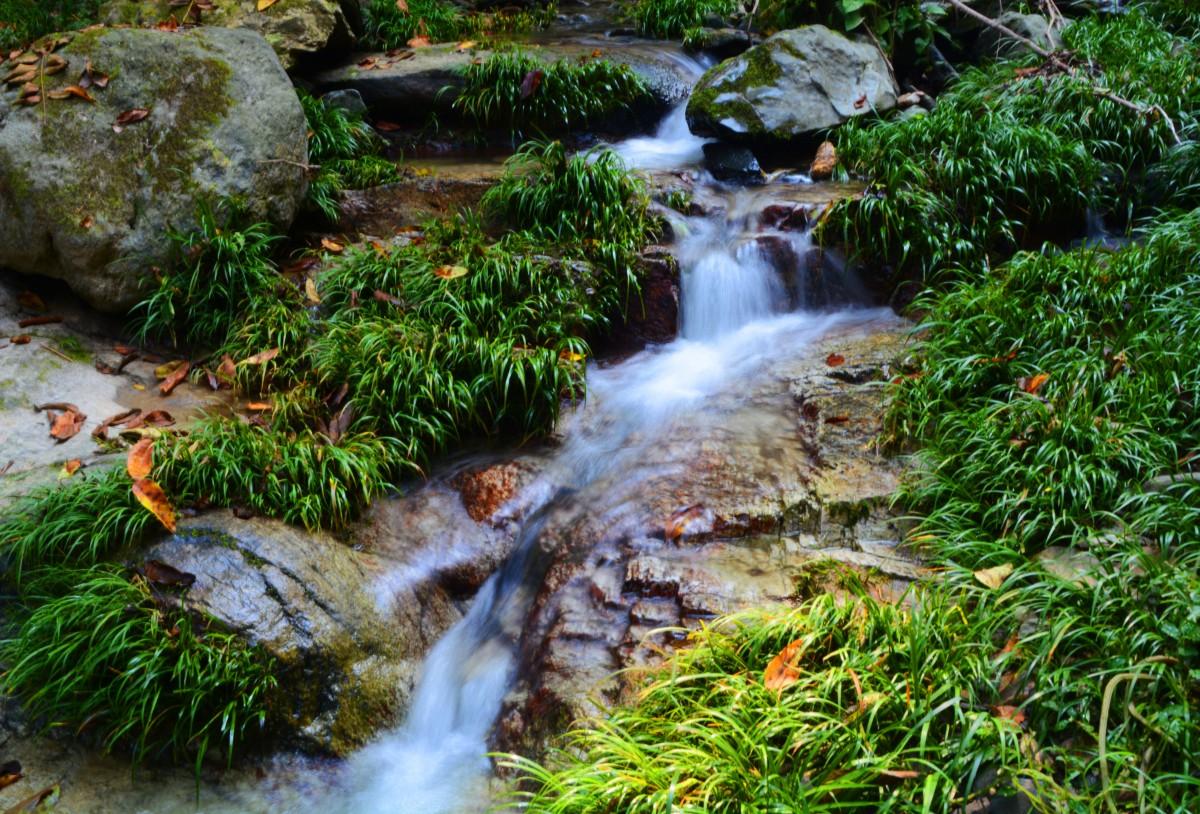 太和梅花谷旅游景区