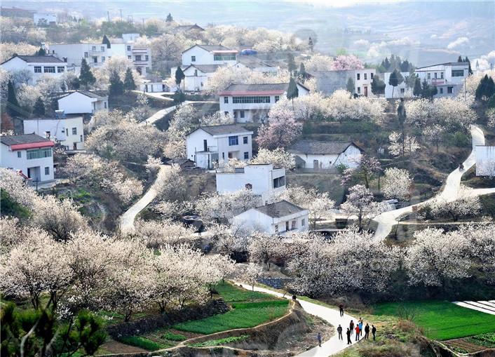 【资讯】十堰及周边这些隐匿的古村落你去过几个?