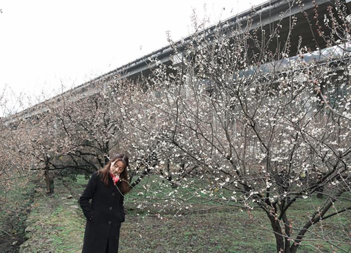 汉江街办十里樱桃长廊