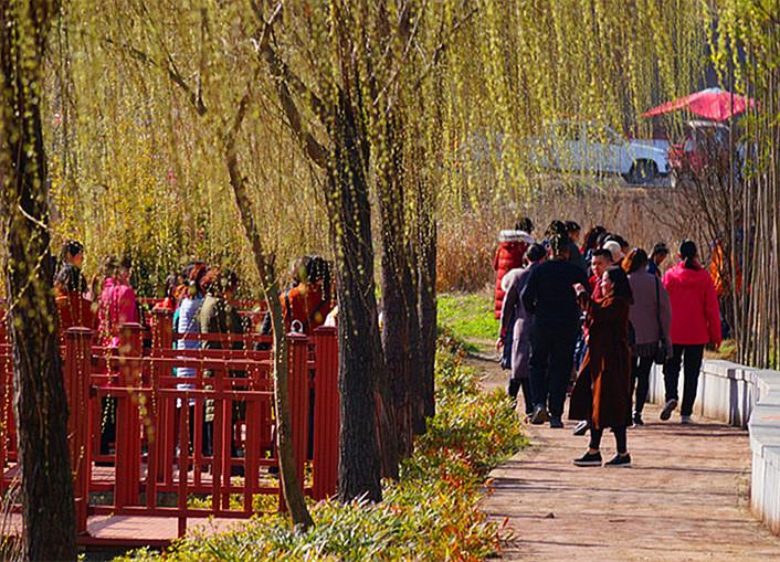 阳春三月好风光   桃红柳绿美竹溪