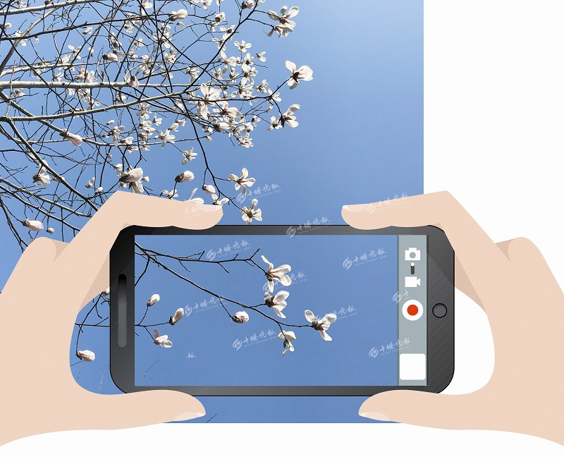【资讯】十堰晚报、秦楚论坛邀请你将最美春色装进手机