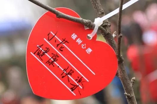 【资讯】这个月,丹江口太极峡景区要做一件大事情!
