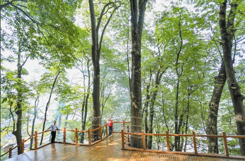 打造全域旅游建设示范县