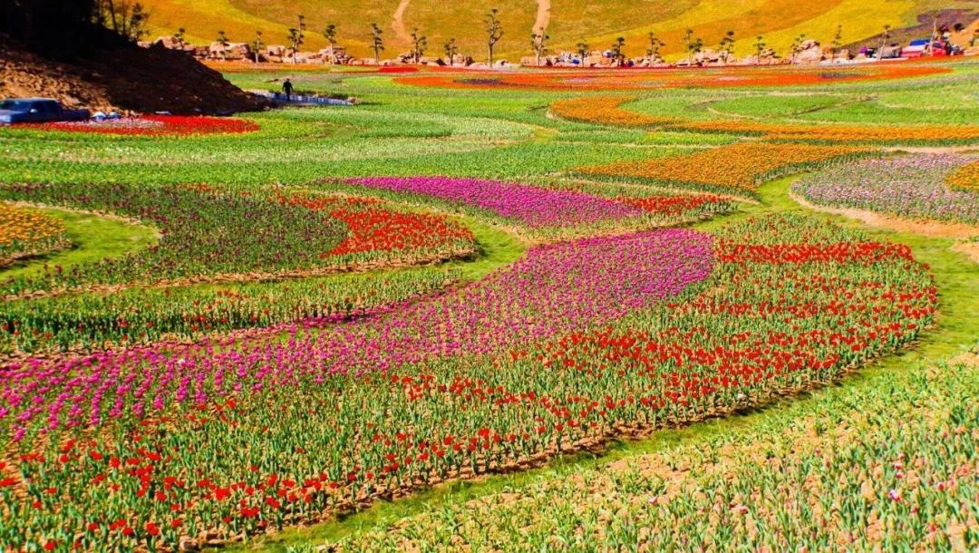 在十堰,举步即至一个如此美丽的山谷花园!