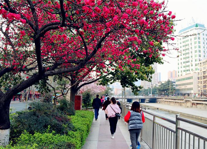 百二河畔春光美
