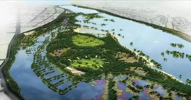 【资讯】惊艳!丹江口沧浪洲湿地公园将要美得飞起