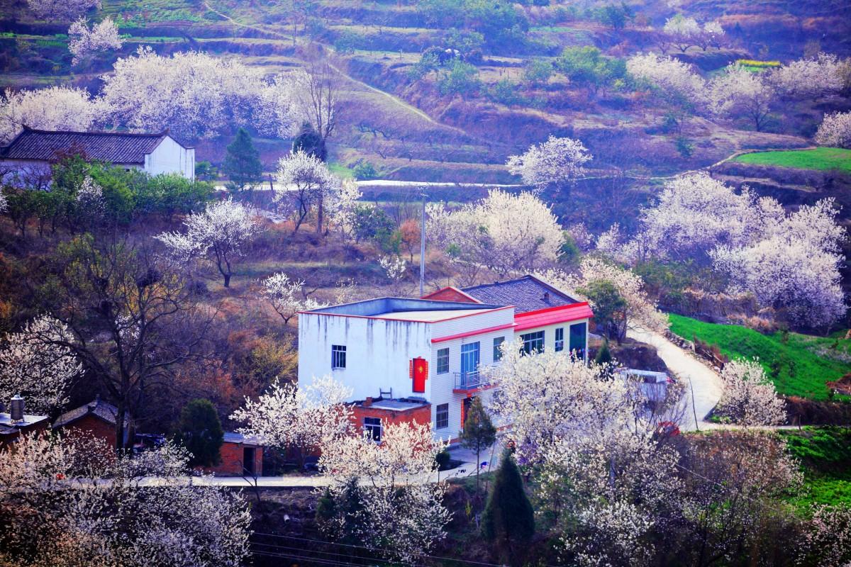 【资讯】郧阳区第二届乡村旅游文化节精彩不停