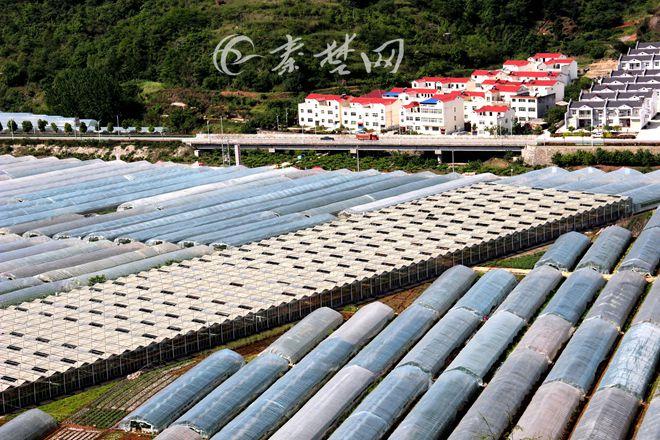 【资讯】柳陂打造环境优美、宜居宜游的美丽乡村样板