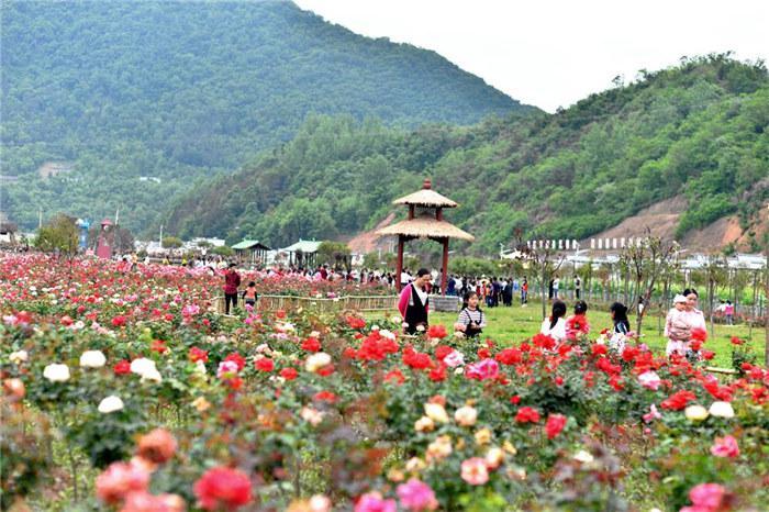 【资讯】竹山乡村振兴有成效  山村变为大花园