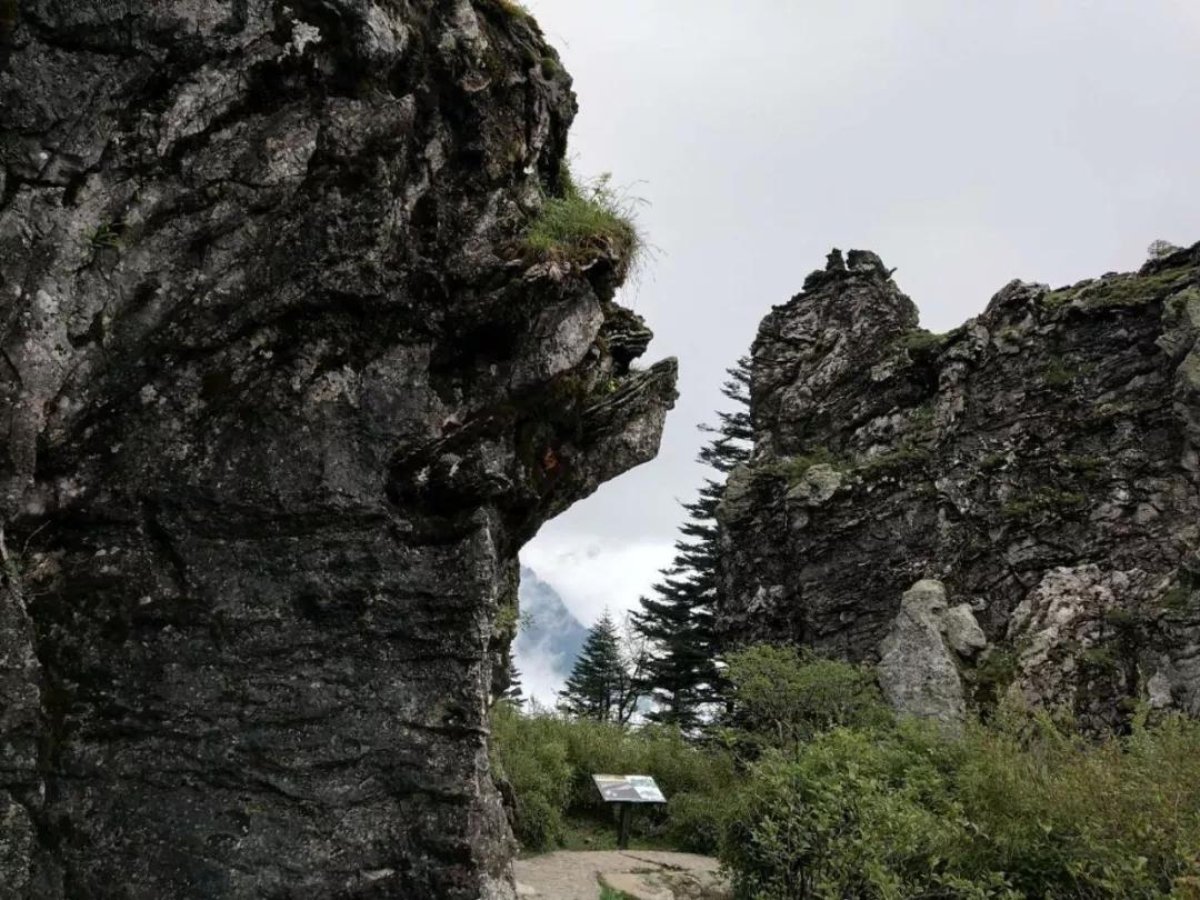 """【资讯】神秘莫测!神农架板壁岩又现""""野人踪迹"""""""