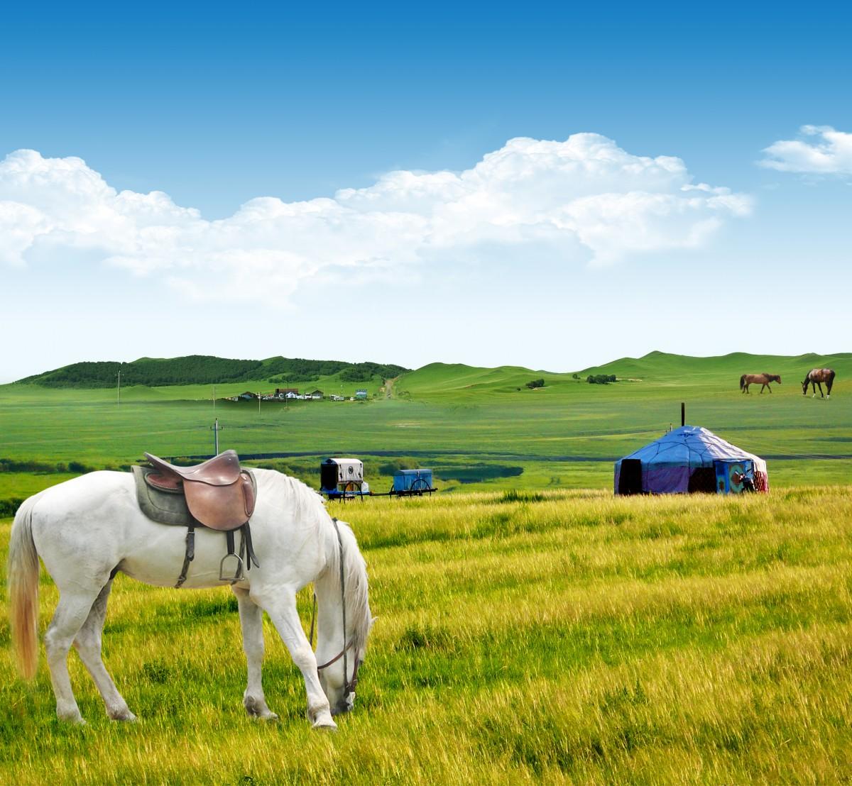 【资讯】这些据说是中国最美的草原   你去过几个?