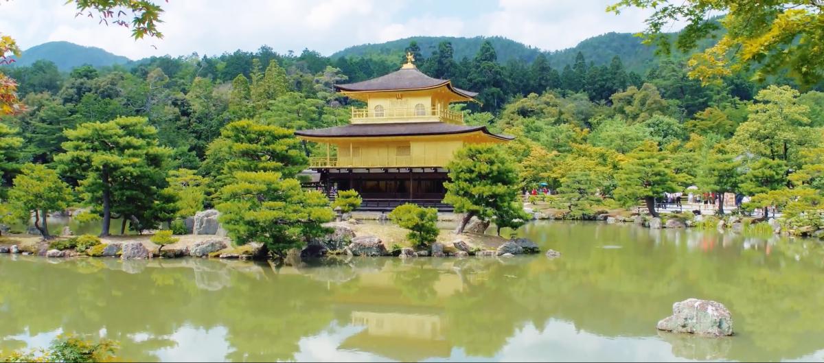 【资讯】京都的新绿简直美哭了!错过再等一年!