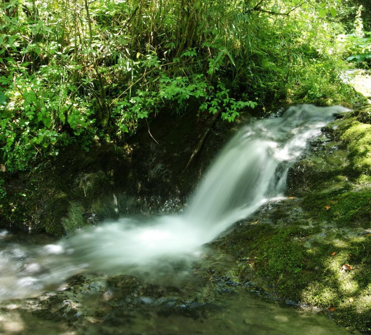 【资讯】去神农架避暑的5个理由   哪个最吸引你