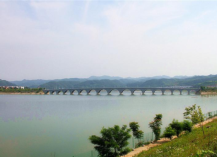 夏日柳陂湖