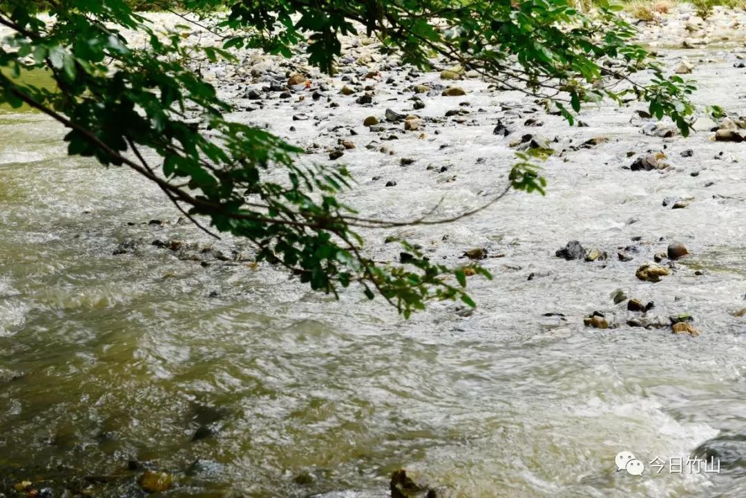 【资讯】十堰将多避暑胜地!竹山将在这里建森林公园