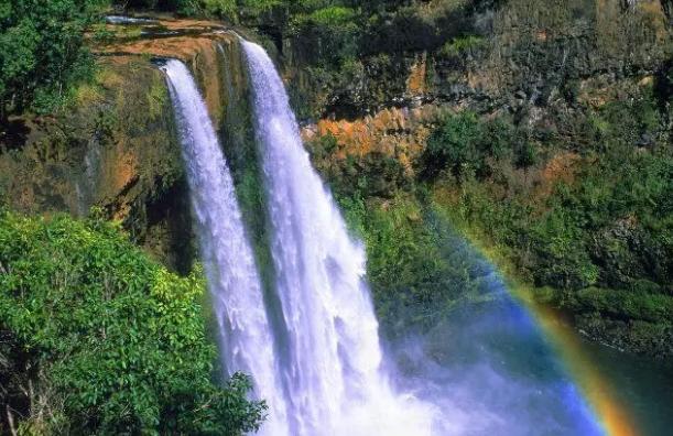 【资讯】若你爱冒险  一生一定要去一次热带雨林