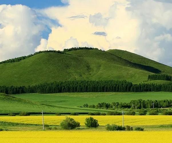 【资讯】夏天若有十分美  内蒙古至少占七分