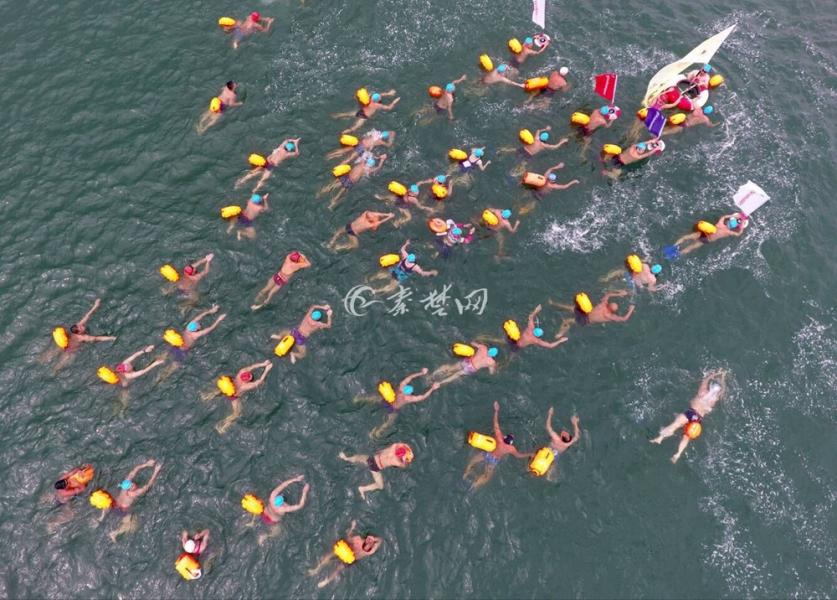 【资讯】壮观!全国千余名游泳健儿丹江口横渡汉江