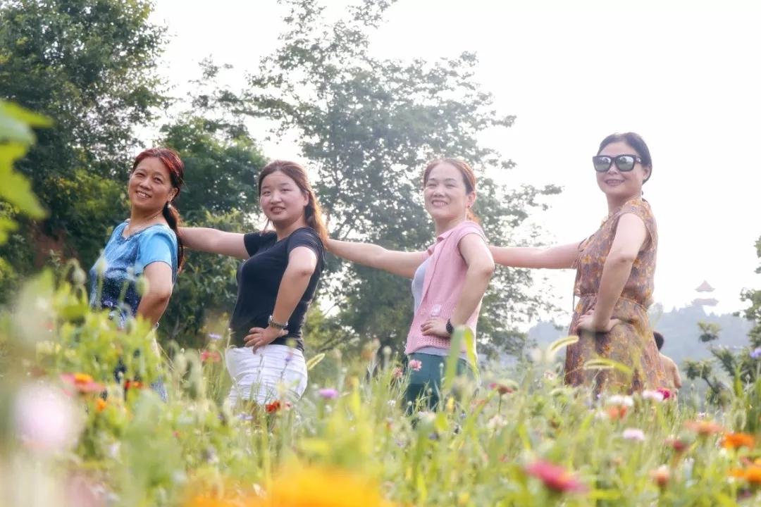 【资讯】惊艳!丹江口此处藏着两万平米游园夏花盛放