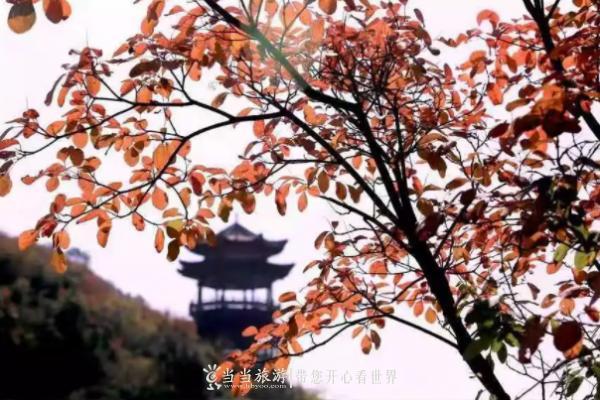 【资讯】一到秋天,十堰这个4A级景区就美成了油画!