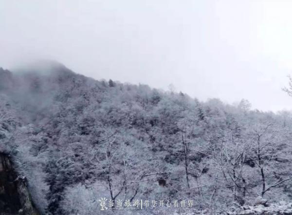 【资讯】下雪啦!竹溪第一场雪下到了这里!快来看