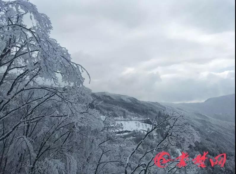 【资讯】太美了,十堰这里现雾凇奇观,美如仙境!