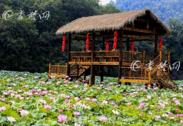 郧西县涧池乡下营村