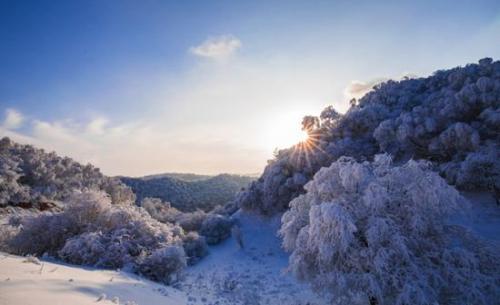 【资讯】冰雪旅游进入黄金增长期,变身度假新选择