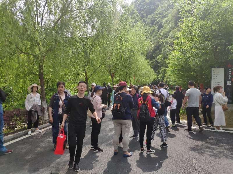 3672万元!竹山县五一旅游收入创新高!