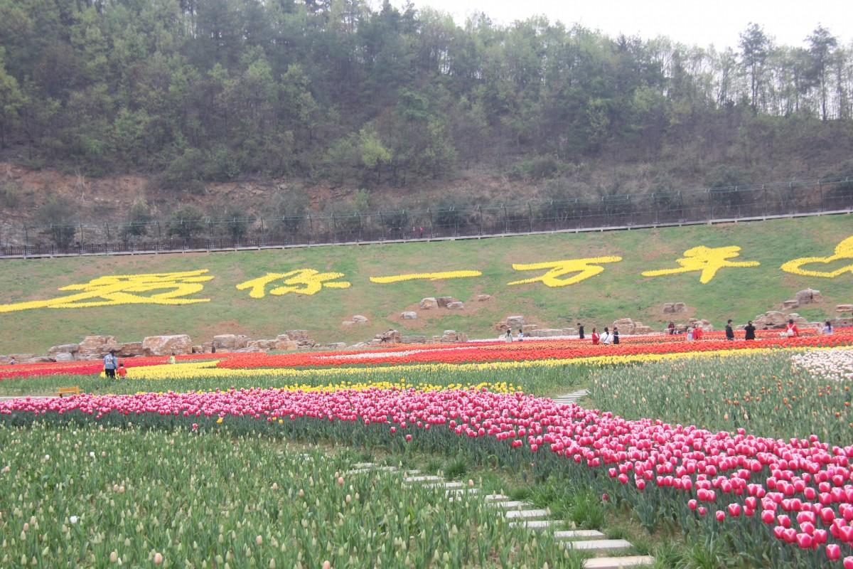 秦巴生态植物园