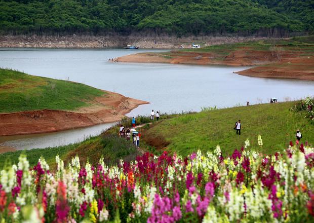 汉江绿谷花开正当时!