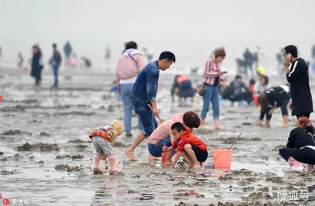 【扬帆吧,少年】第一季: 日照亲海游学夏令营