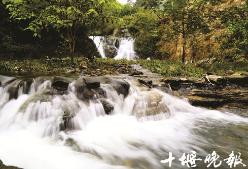 【资讯】茅箭区大川:在清风溪流中找寻清凉世界