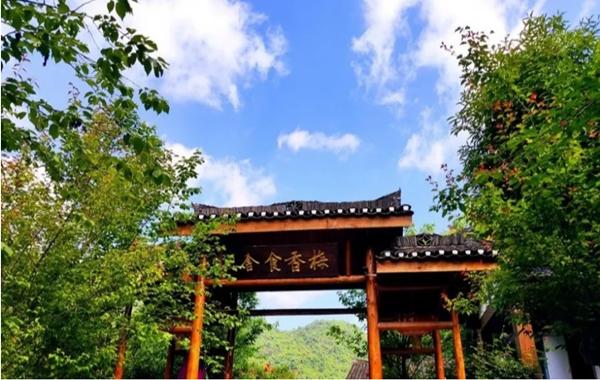 【资讯】太和梅花谷推出开学季+教师节活动