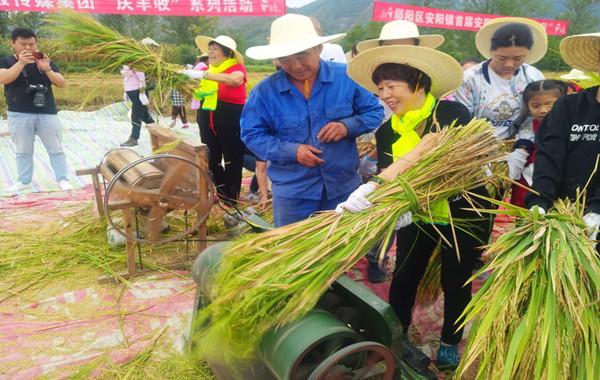 【资讯】本周末,邀您和孩子一起到安阳体验收稻谷!