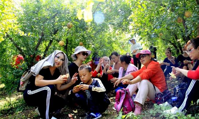 【资讯】丹江口市玉皇顶村第二届石榴节即将开始