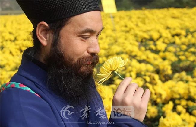 """【资讯】十堰这里藏着一片金黄色花海,邀请摄影师来""""咔嚓"""""""