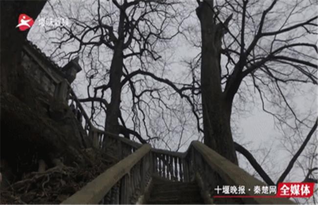 【资讯】不可思议!十堰大山里拍下的震撼画面