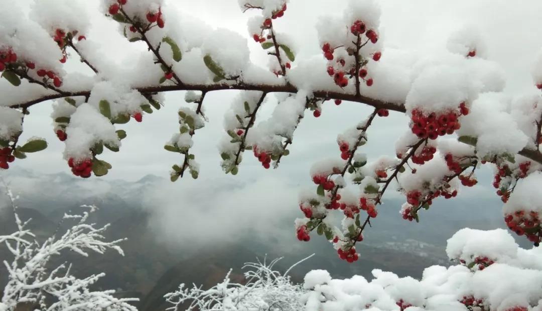 【资讯】雪中的十堰,太美了!