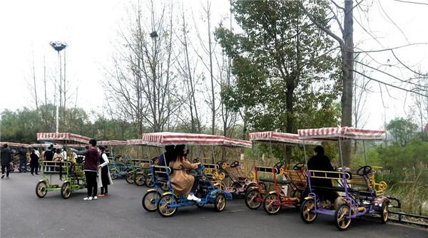 【资讯】日均2万人次,丹江口市民都在这儿赏花踏青