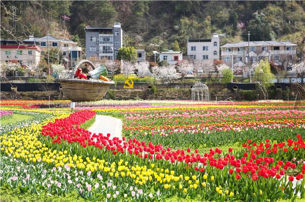 【资讯】春意渐浓,张湾三条春季自驾线路等你打卡