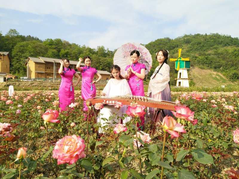 【资讯】五一长假第三天,竹溪桃花岛春和景明游人乐!