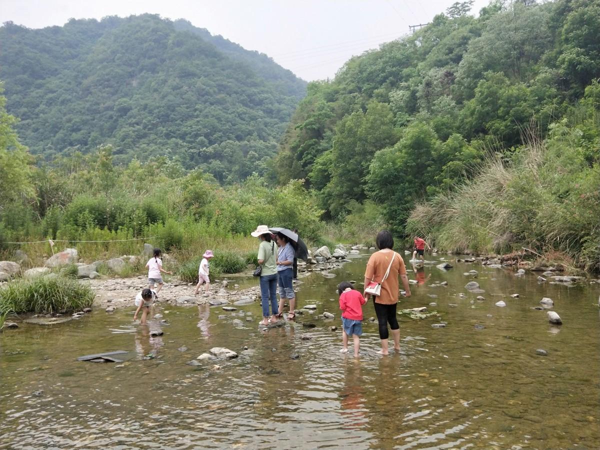 【资讯】茅箭清凉乐水旅游季活动吸引众多市民消暑纳凉