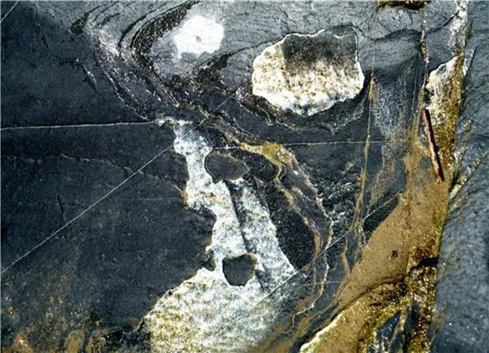 惠游湖北|竹溪石板河河床画又有新发现