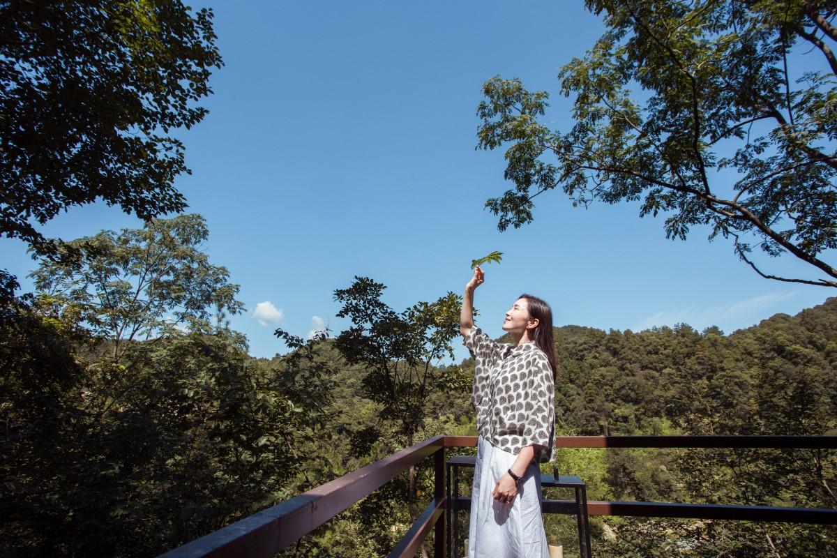 【资讯】好消息!东沟这家童话般的森林树屋民宿开业啦!