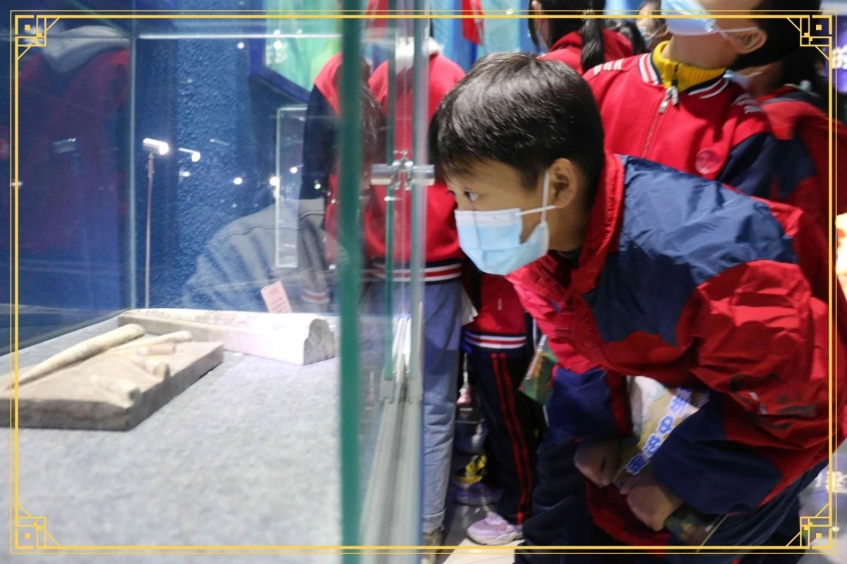 5000余名学生走进恐龙研学基地开展研学活动